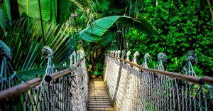 Amazonas planes Viajar con Promociones